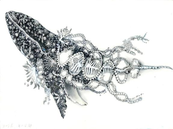 4-TARA-drawing-dna-whale-ohkojima.jpg